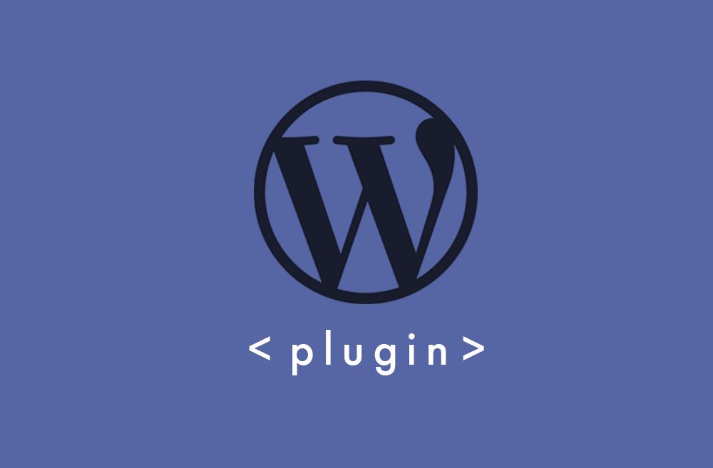 【入れすぎ禁物】WordPressに入れるべきプラグインは4つだけ + おすすめ8つ